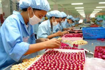 Dịch vụ xin giấy phép lao động Trung Quốc vào khu công nghiệp Nghệ An làm việc