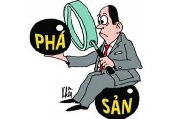 Trách nhiệm của thành viên khi công ty TNHH hai thành viên tại Nghệ An  bị phá sản