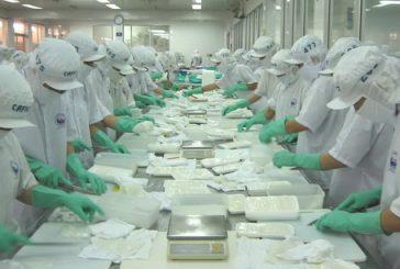 Thành lập công ty chế biến thủy sản