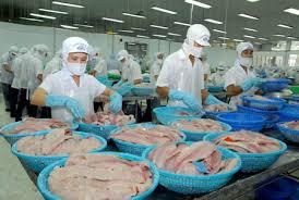 Thành lập công ty chế biến thủy sản (Nguồn internet)