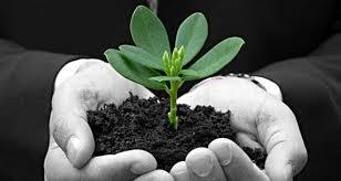 Lợi ích của việc thành lập công ty mới và quy trình thành lập công ty